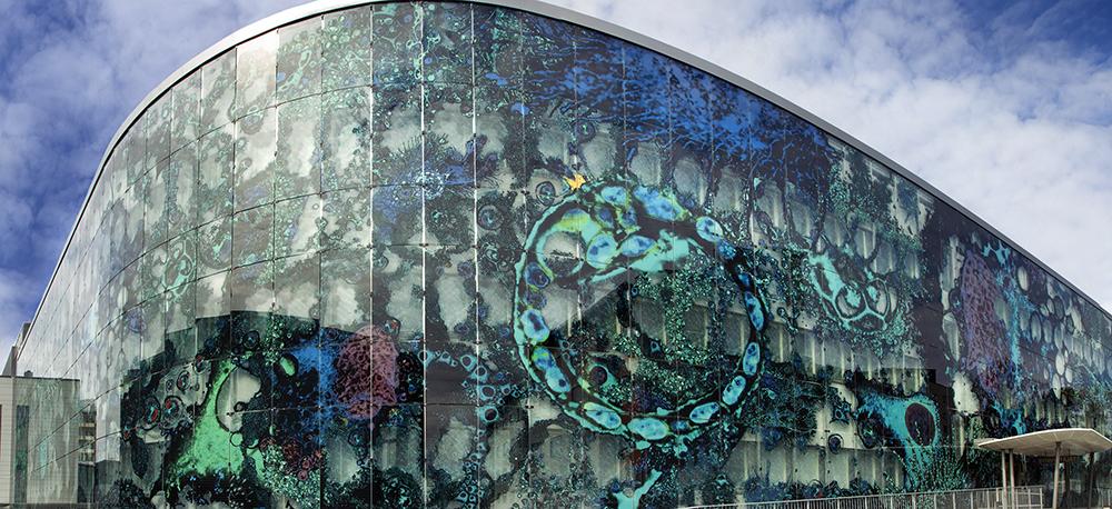 Kuopio Goes -konseptilla vaikuttavuutta kansainvälistymiseen