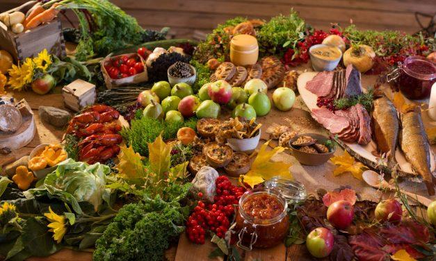 Gastronomisia elämyksiä luonnosta