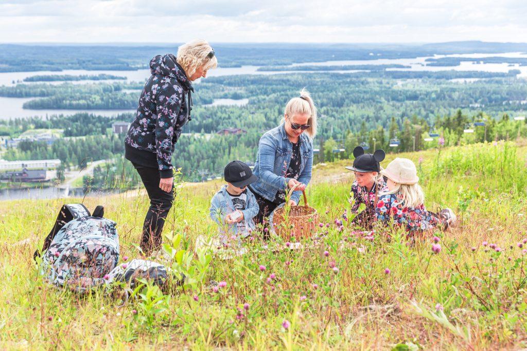 kaksi naista ja kolme lasta piknikillä heinäniityllä, Tahko huipulta avautuu järvimaisema